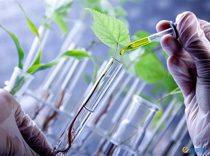 农资-水溶肥试验