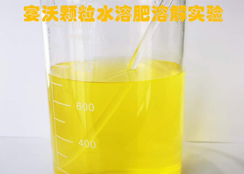 颗粒水溶肥溶解试验