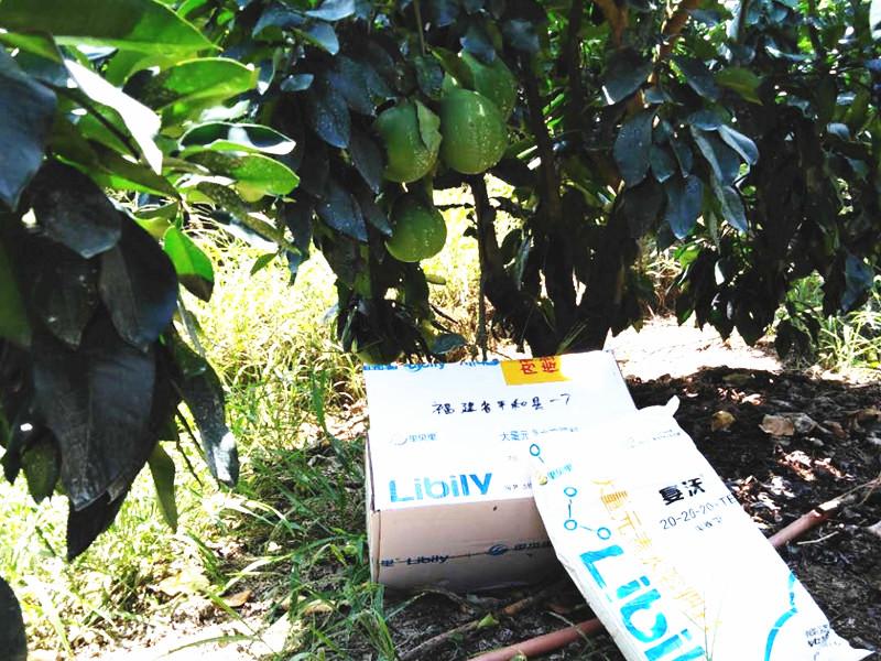 水溶肥厂家-蜜柚