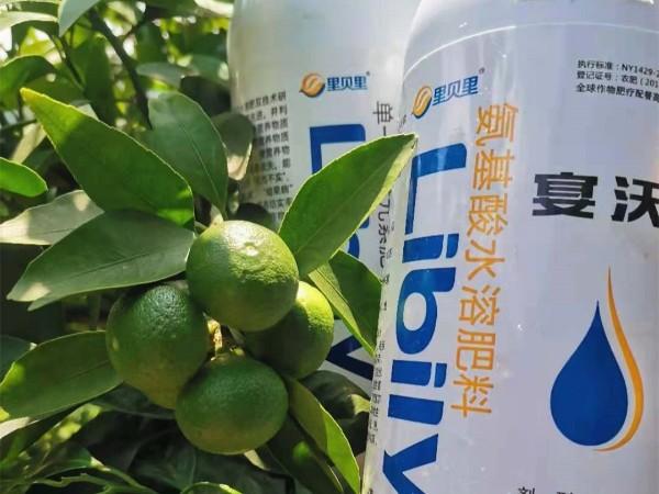 水溶肥-柑橘