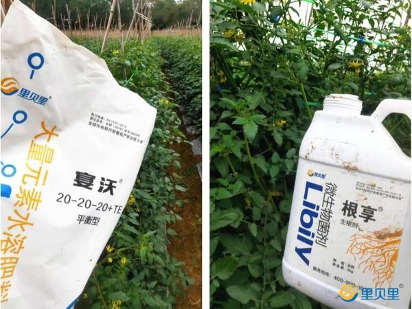 水溶肥经销商如何选择好产品?