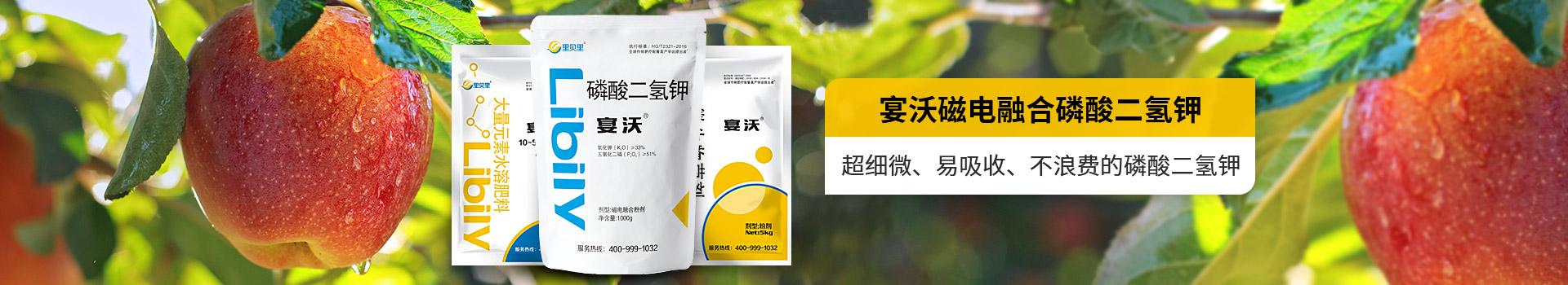 里贝里-粉剂水溶肥
