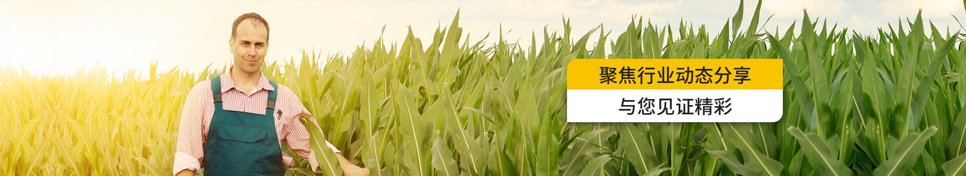水溶性肥料品牌